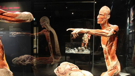 Body Worlds Amsterdam parken